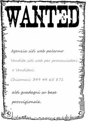 Offerta lavoro vendita siti web  , agenzia siti web palermo cerca venditori siti internet trapani, marsala, agrigento, siracusa ragusa, enna, messina, catania,